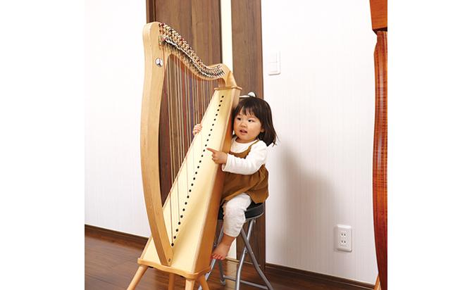 ハープ 楽器